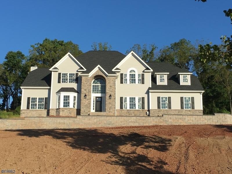 Частный односемейный дом для того Продажа на 33 Newcastle Raritan, Нью-Джерси 08822 Соединенные Штаты