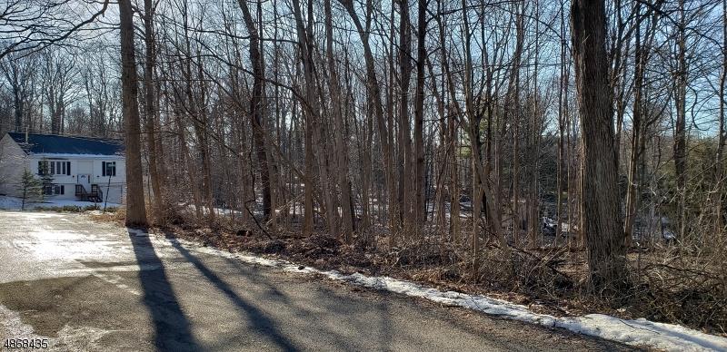 Земля для того Продажа на 1 CHESTNUT ST/49 PADDOCK Vernon, Нью-Джерси 07422 Соединенные Штаты