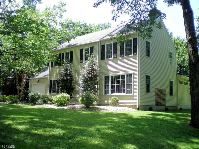 Enfamiljshus för Försäljning vid 3 Nitzer Avenue Lebanon, New Jersey 08833 Usa