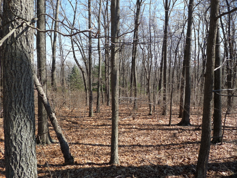 Land for Sale at Liberty Township, New Jersey 07838 United States