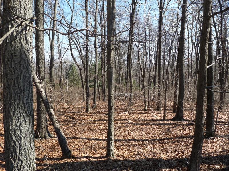 Land voor Verkoop op Liberty Township, New Jersey 07838 Verenigde Staten