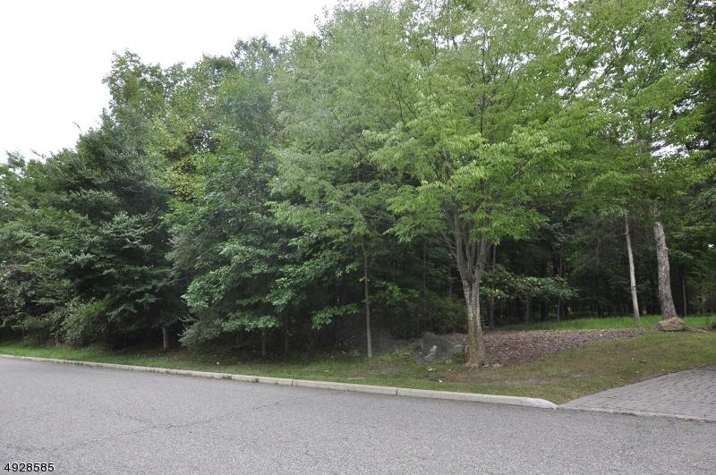 土地,用地 为 销售 在 莫瓦, 新泽西州 07430 美国