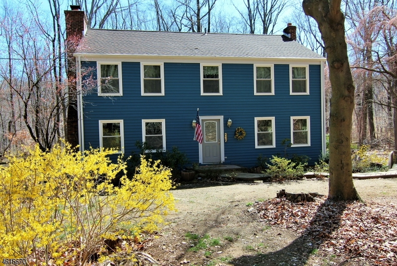 Single Family Home for Sale at 267 Turkey Hill Road Bloomsbury, New Jersey 08804 United States