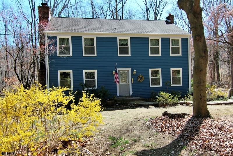 Частный односемейный дом для того Продажа на 267 Turkey Hill Road Bloomsbury, 08804 Соединенные Штаты