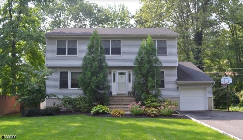 Частный односемейный дом для того Продажа на 9 Sycamore Avenue Hillsdale, 07642 Соединенные Штаты