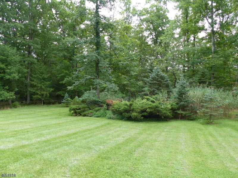 Additional photo for property listing at 5 Deer Run  Blairstown, Нью-Джерси 07825 Соединенные Штаты