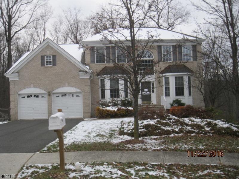 Частный односемейный дом для того Продажа на 26 Chestnut Way Flanders, 07836 Соединенные Штаты