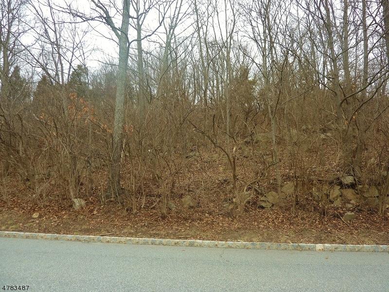 Terreno per Vendita alle ore 28 Mallard Drive Allamuchy, New Jersey 07840 Stati Uniti