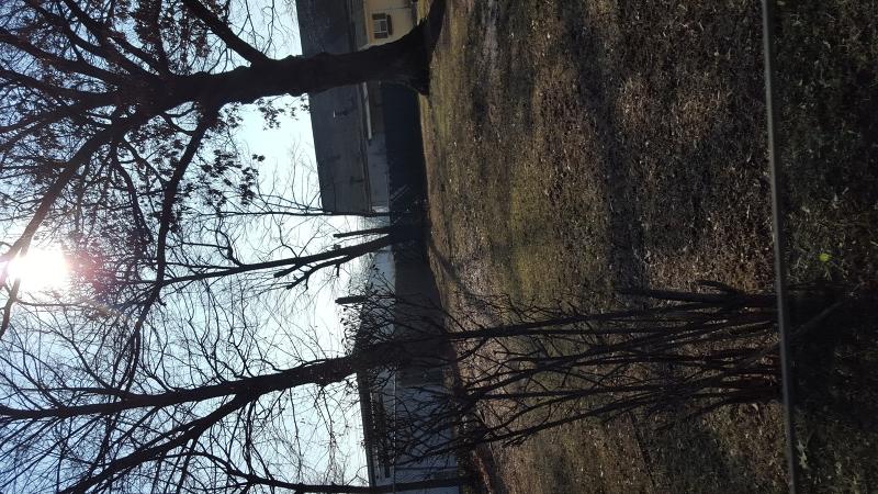 Terrain pour l Vente à 1315 W 6th Street Piscataway, New Jersey 08854 États-Unis
