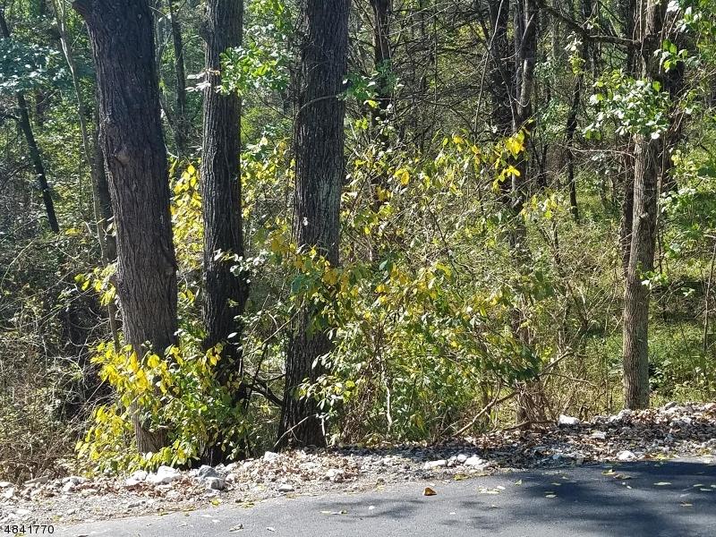 Terreno per Vendita alle ore 35 RUBIN HILL Road Montague, New Jersey 07827 Stati Uniti