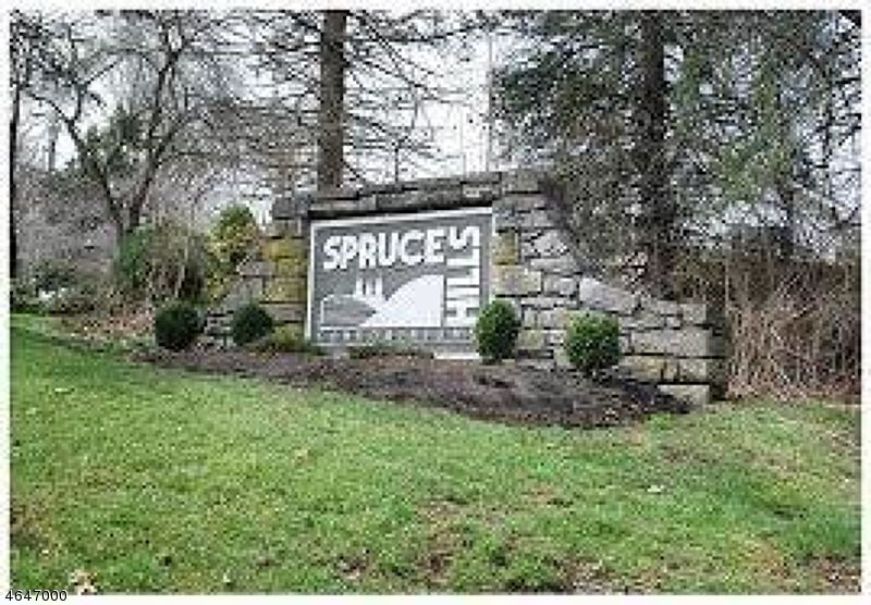 Maison unifamiliale pour l Vente à 1905 Spruce Hills Drive Glen Gardner, New Jersey 08826 États-Unis
