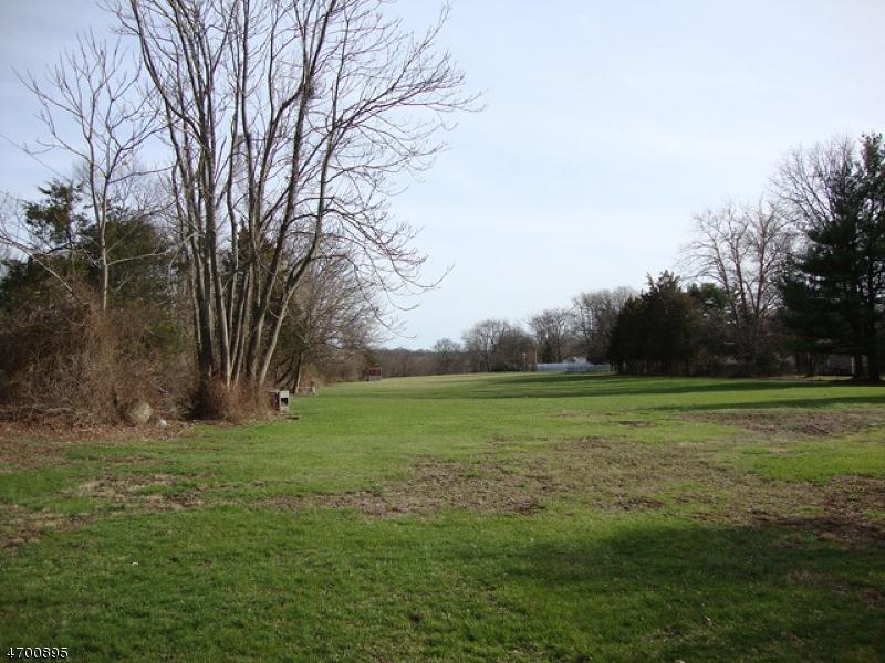 土地 为 销售 在 303 Old York Road 布里奇沃特, 新泽西州 08807 美国