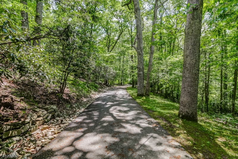 Additional photo for property listing at 58 Baileys Mill Road 58 Baileys Mill Road Harding Township, ニュージャージー 07920 アメリカ合衆国