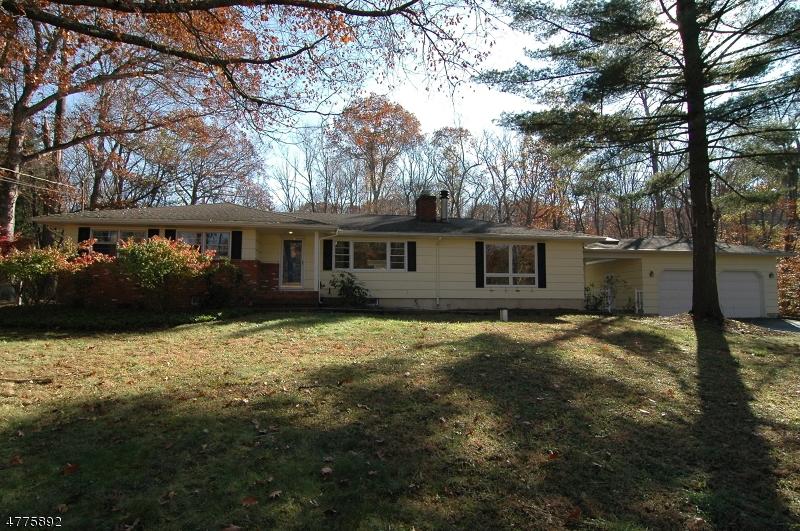 一戸建て のために 売買 アット 19 Furnace Road Chester, ニュージャージー 07930 アメリカ合衆国