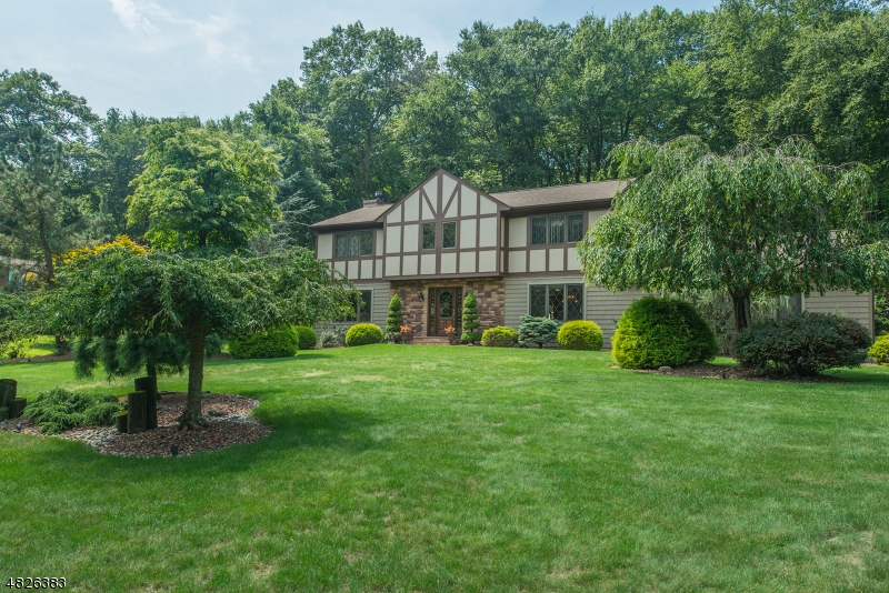 Single Family Home for Sale at 7 WILLIAMS Road Roxbury Township, New Jersey 07850 United States