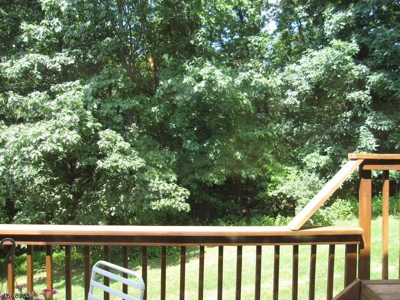 Additional photo for property listing at 41 Overlook Drive  Hackettstown, New Jersey 07840 États-Unis
