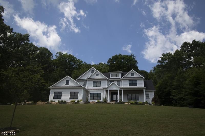 独户住宅 为 销售 在 5 SYDNEY Lane 莱巴嫩, 新泽西州 07865 美国