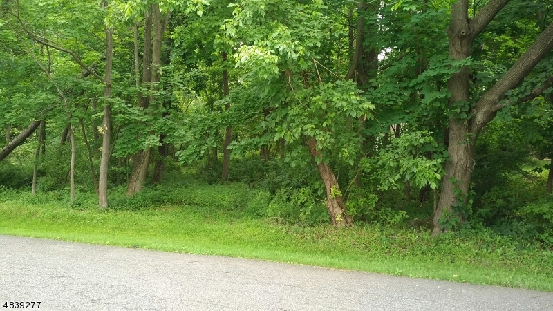 Land for Sale at 73 BELVIDERE Avenue West Amwell, New Jersey 08530 United States