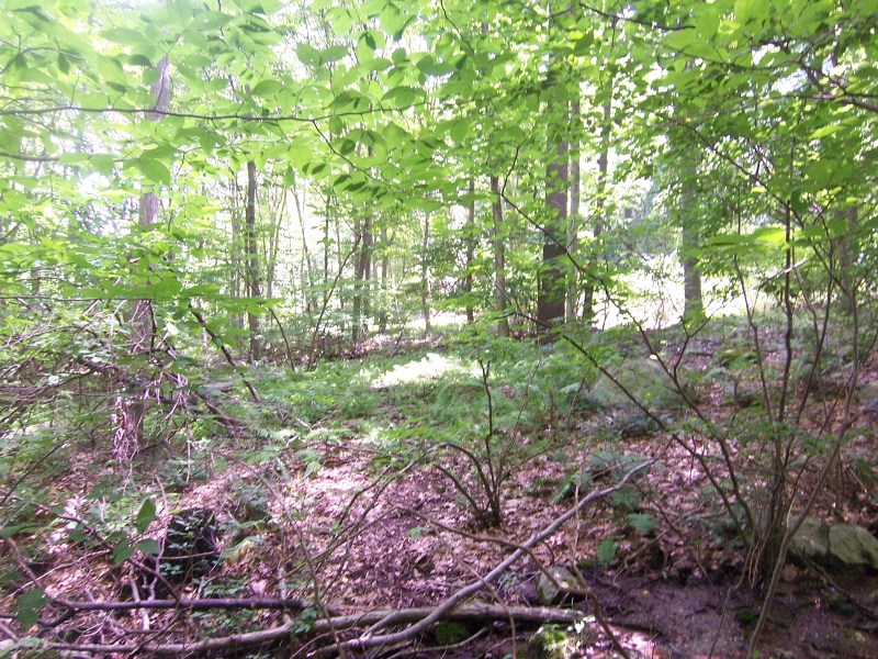 Additional photo for property listing at RESERVOIR Road  Washington, Nueva Jersey 07840 Estados Unidos
