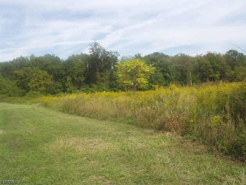 土地,用地 为 销售 在 28 Route 15 拉斐特, 新泽西州 07848 美国