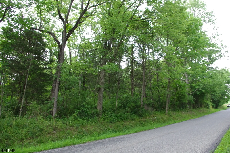 Land for Sale at Mountain Road Phillipsburg, New Jersey 08865 United States