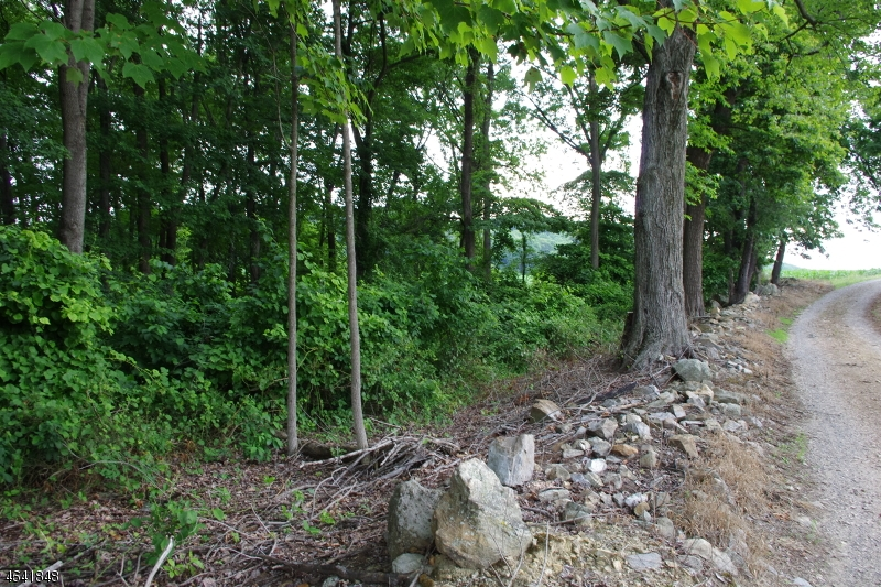 Additional photo for property listing at Mountain Road  Phillipsburg, New Jersey 08865 United States