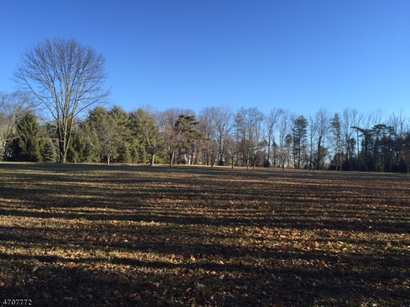 Land for Sale at 61 Village Road 61 Village Road Harding Township, New Jersey 07976 United States
