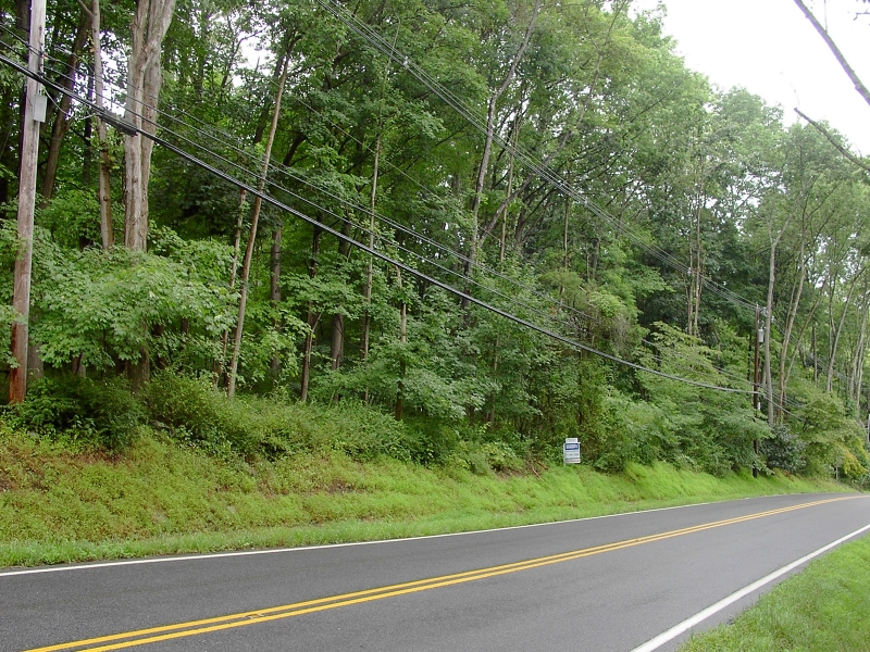 Land for Sale at 61 Academy Street Califon, New Jersey 07830 United States