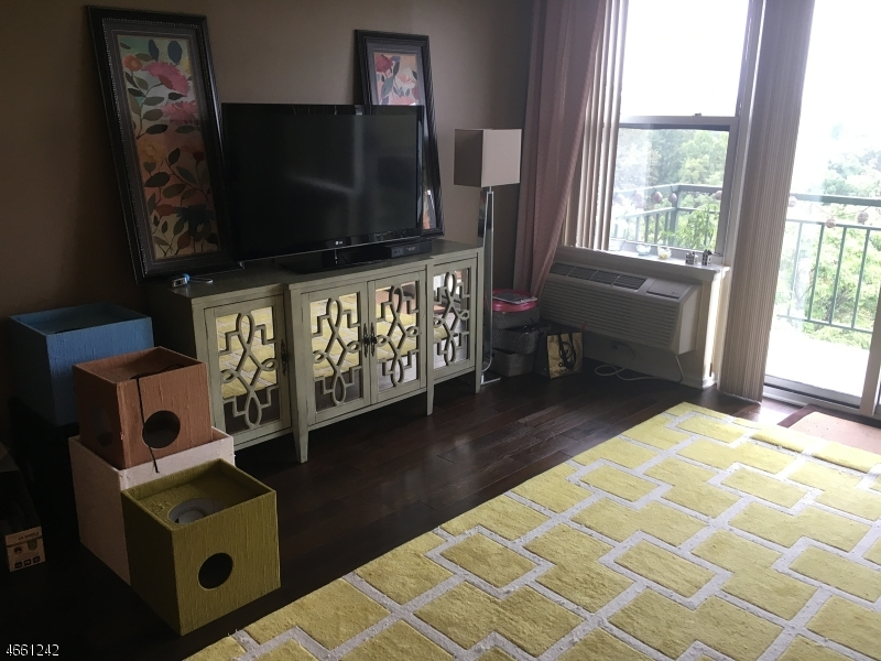 Additional photo for property listing at 300 Main St, UNIT 907  小瀑布市, 新泽西州 07424 美国