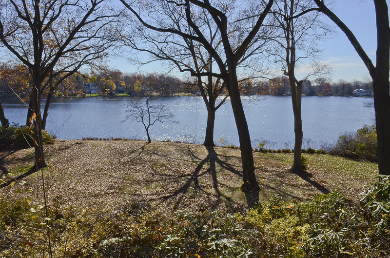 Land for Sale at 302 Boulevard,302 Mountain Lakes, 07046 United States