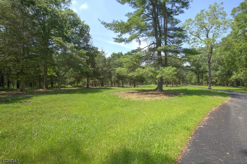Land / Lots for Sale at 1 TWIN OAKS LN 1 TWIN OAKS LN Harding Township, New Jersey 07976 United States