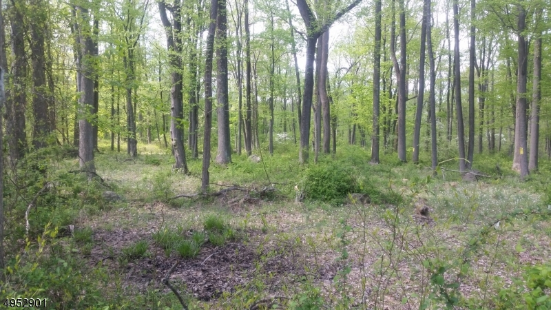 Land for Sale at West Amwell, New Jersey 08530 United States