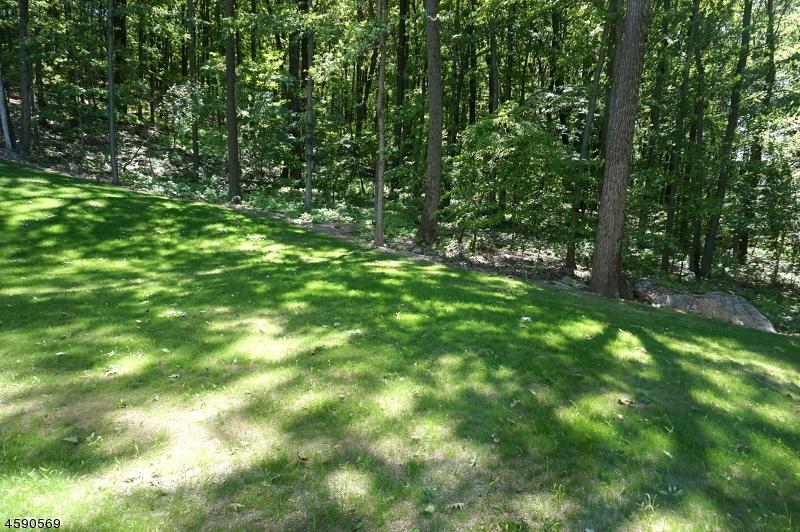 Additional photo for property listing at 16 Salmon Court  Budd Lake, Нью-Джерси 07828 Соединенные Штаты