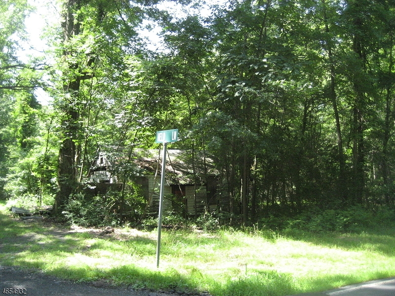 Additional photo for property listing at 357 Zion Road  Hillsborough, New Jersey 08844 États-Unis