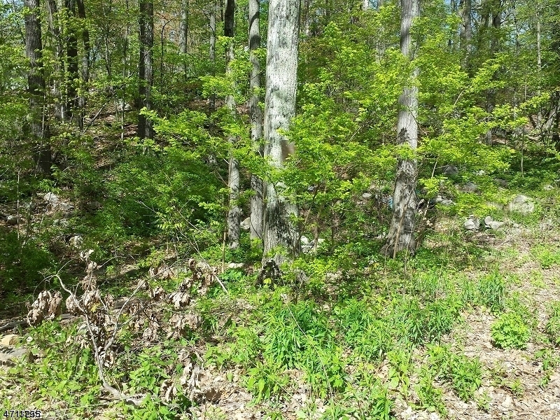 Land for Sale at LONGHOUSE Drive West Milford, New Jersey 07421 United States