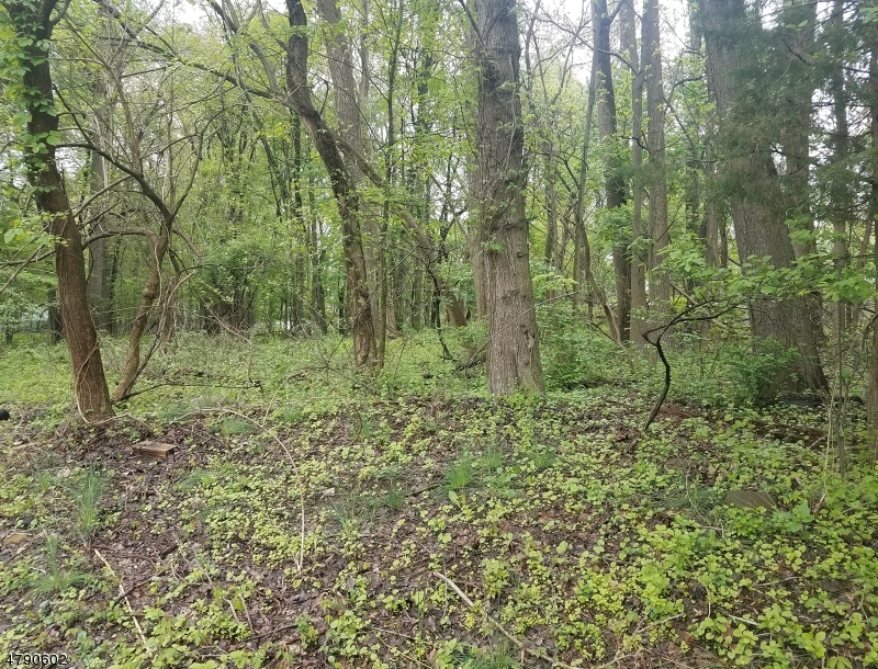 Land for Sale at 24 Wellington Avenue Closter, New Jersey 07624 United States