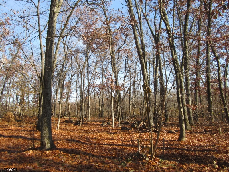 Land for Sale at 802 ACORN Lane Neshanic Station, New Jersey 08853 United States