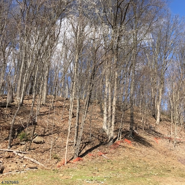 Additional photo for property listing at Stephensburg Road  Washington, New Jersey 07865 Förenta staterna