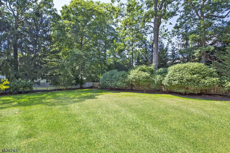 Additional photo for property listing at 21 Taft Drive  Short Hills, New Jersey 07078 United States