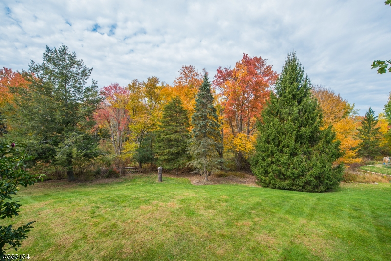 Additional photo for property listing at 531 A Powerville Road  Boonton, New Jersey 07005 United States