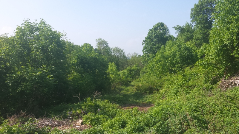 Land for Sale at 13 Valley Ter, SUSAN Vernon, New Jersey 07462 United States
