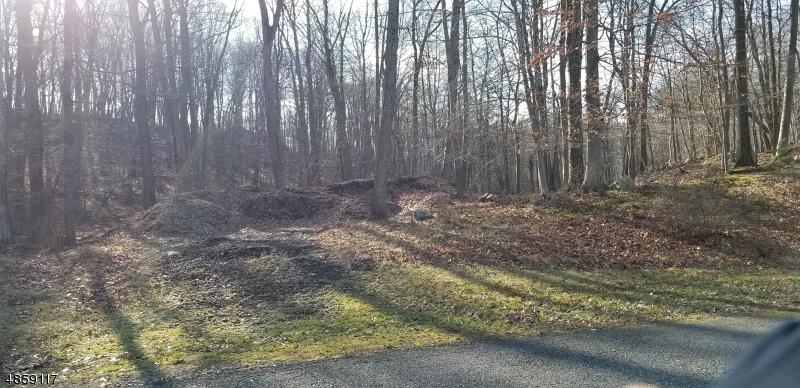Terreno per Vendita alle ore 14 LIBERTY Trail Andover, New Jersey 07860 Stati Uniti