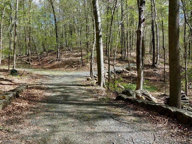 土地,用地 为 销售 在 伯纳兹维尔, 新泽西州 07924 美国