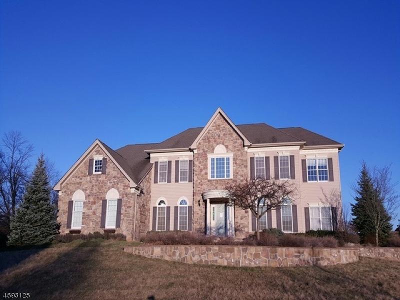 独户住宅 为 销售 在 18 Balmoral Drive Pittstown, 新泽西州 08867 美国