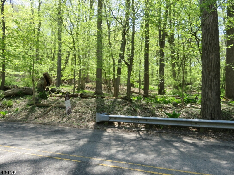 Land for Sale at 44 SHONGUM Road Denville, New Jersey 07834 United States