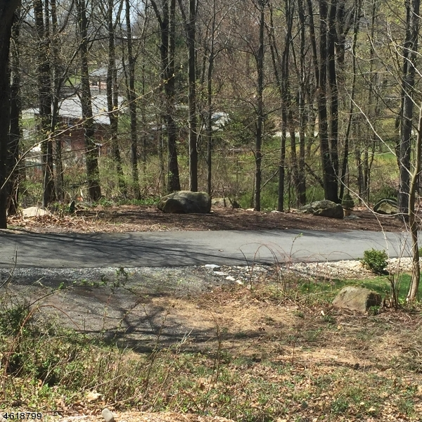 Additional photo for property listing at 246 Ross Drive  Boonton, New Jersey 07005 United States