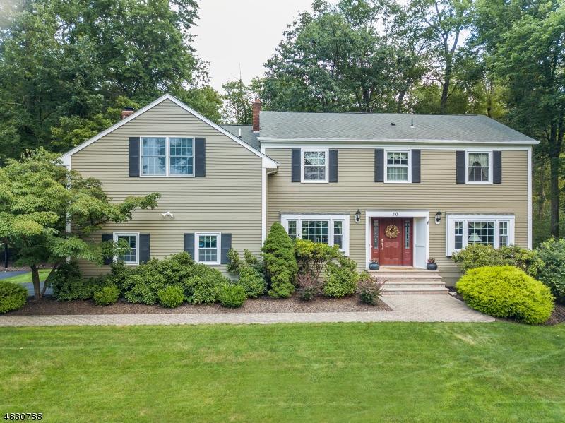 Maison unifamiliale pour l Vente à 20 MEADOW BROOK Road Randolph, New Jersey 07869 États-Unis