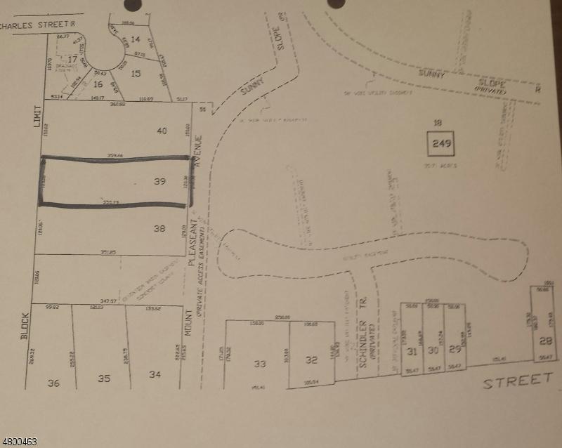Terrain pour l Vente à Mt.Pleasant Avenue Bridgewater, New Jersey 08807 États-Unis