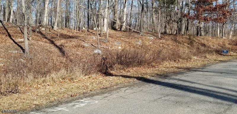Arazi için Satış at 4 EILEENS WAY Andover, New Jersey 07860 Amerika Birleşik Devletleri