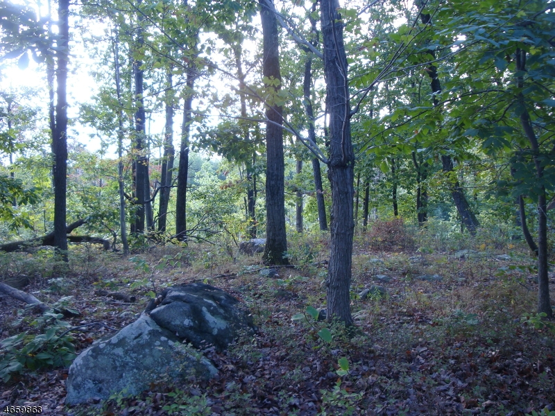 Additional photo for property listing at 3 Boulder Court  Boonton, Нью-Джерси 07005 Соединенные Штаты